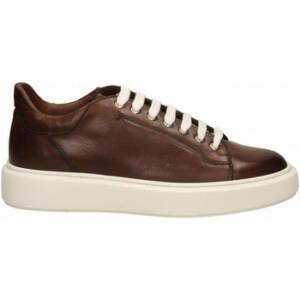 Nette schoenen Brecos SERRA DELAVE