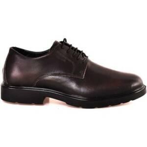 Nette schoenen Igi co 2100611
