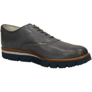 Nette schoenen Lion CLUB