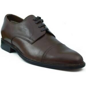 Nette schoenen Trotters MIXTO RONTE