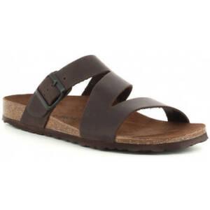 Slippers Interbios 9553 marrón