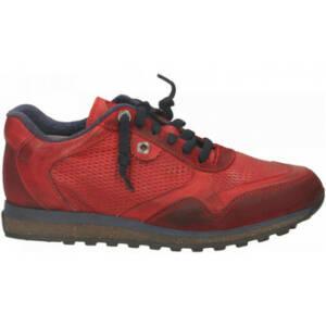 Nette schoenen Exton ANTICATO