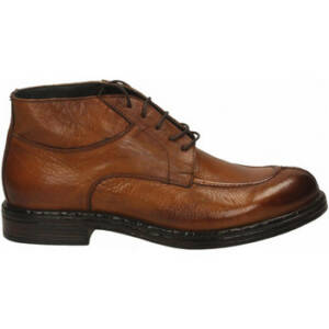 Nette schoenen Exton SOFT