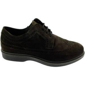 Calzaturificio Loren Nette schoenen LOG0292ma