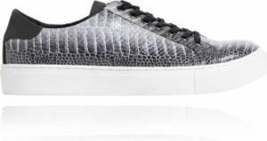 Gray Dino Sneakers - Maat 47 - Lureaux - Kleurrijke Sneakers - Sneakers Met Print - Unisex - Lureaux - Kleurrijke Schoenen Voor Heren - Veterschoenen Met Print